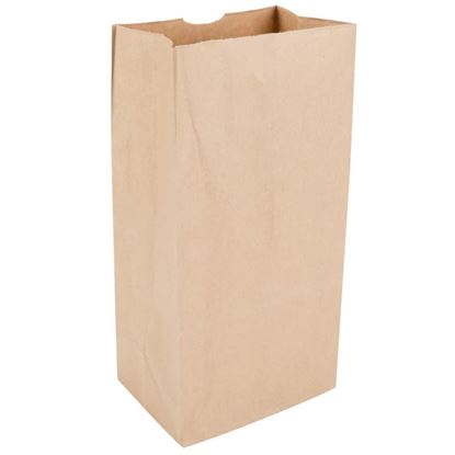 Picture of #10 LD Brown Paper Bag (500pcs)