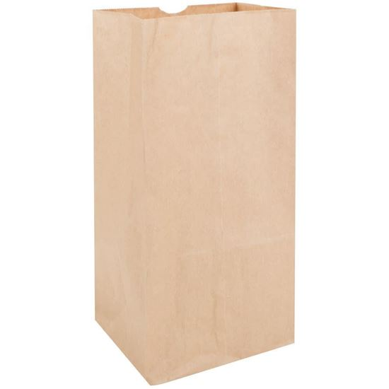 Picture of #20 LD Brown Paper Bag (500pcs)